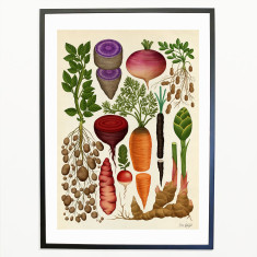 Roots-and-Tubers
